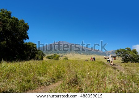 Rinjani mount hiker with personel porter walking at savannah field