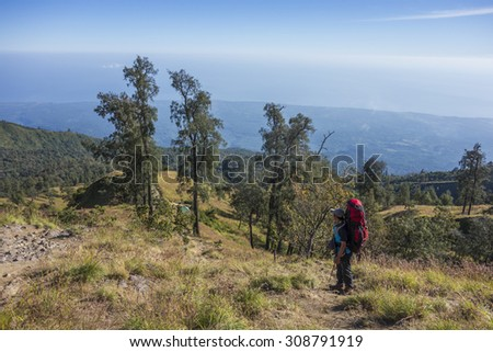 RINJANI MOUNTAIN, LOMBOK, INDONESIA-JUNE 11,2015: Mountain guide AB Pramono with trekking pole looks on the way to Rinjani Mountain in Lombok, Indonesia. - stock photo