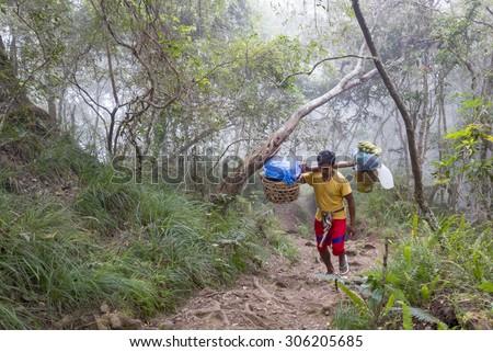 RINJANI MOUNTAIN, LOMBOK, INDONESIA-JUNE 10,2015: Unidentified mountain porter carries food necessities walks slowly on trekking path on the way to Rinjani Mountain in Lombok, Indonesia. - stock photo