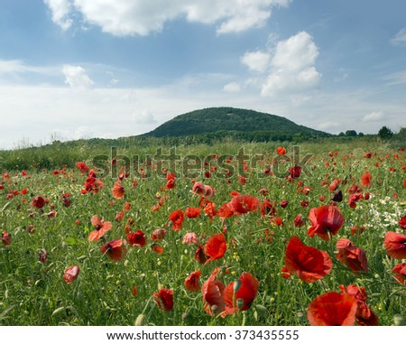 Rip Mountain (Hora Rip) with fields and meadows, Czech Republic - stock photo