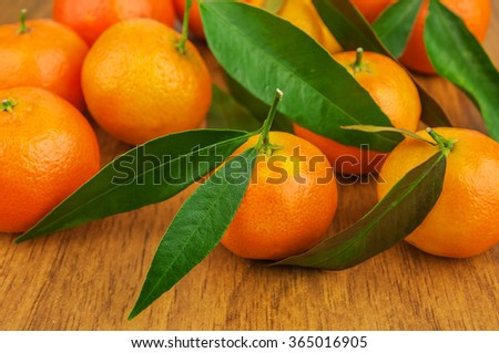ripe and fresh mandarines with green leaves - stock photo
