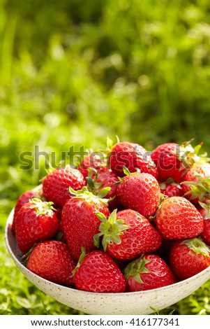 Ripe and tasty strawberries in a bowl on the grass. - stock photo
