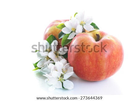ripe apple and apple flowers on a white background - stock photo
