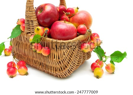 ripe apples in a wicker basket close up on a white background. horizontal photo. - stock photo