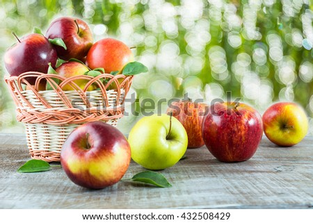 Ripe apples on the wooden table in the garden. Fresh apple fruits. Vegetarian healthy food. Healthy eating concept.  - stock photo