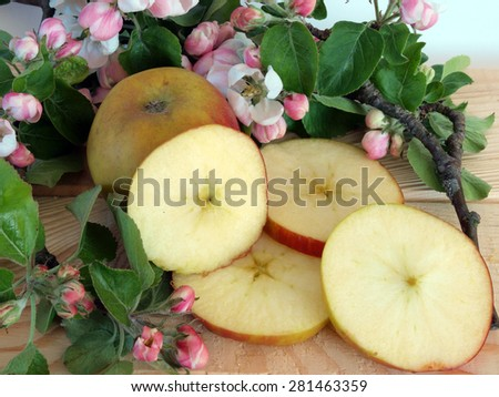 Ripe apples whole and sliced and branch with blossoms - stock photo