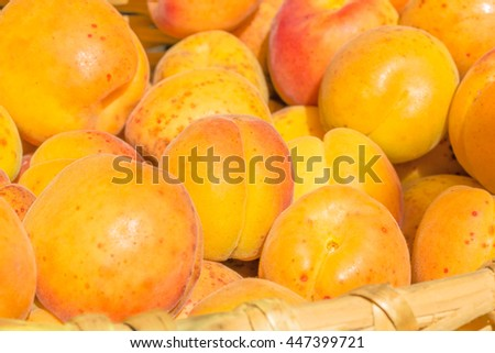 Ripe apricot close up in a wicker basket in the summer garden in evening sunlight - stock photo