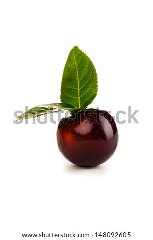 ripe beautiful plum was photographed in studio on a white background