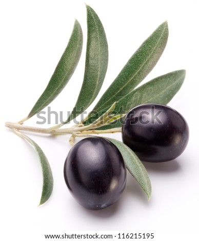 Ripe black olives with leaves on a white background.