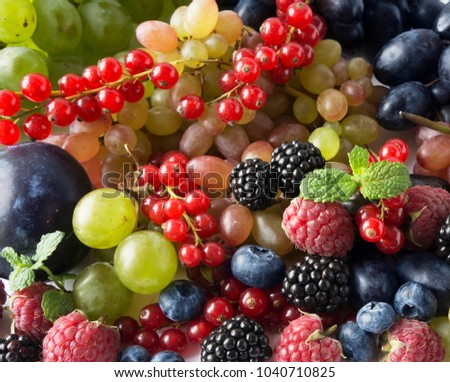 Ripe blackberries, blueberries, raspberries, red currants, grapes and plums. Mix berries and fruits. Top view. Background berries. Various fresh summer fruits.
