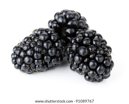 Ripe blackberry fruits. Isolated on white background - stock photo