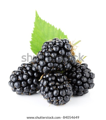 Ripe blackberry fruits with green leaves. Isolated on white background - stock photo