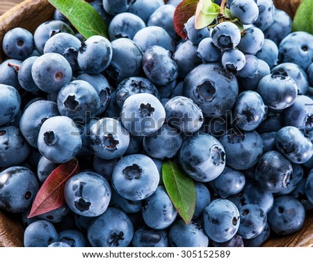 Ripe blueberries in the bowl on the wooden table. - stock photo