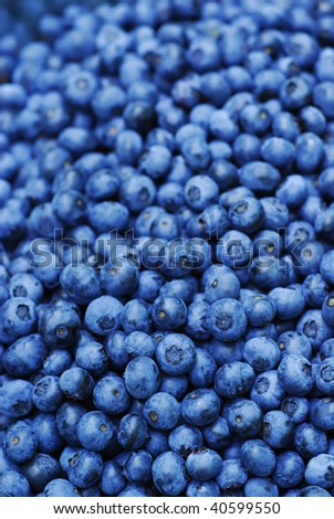 Ripe Blueberry Background - stock photo