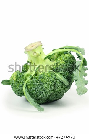Ripe Broccoli Cabbage Isolated on White Background