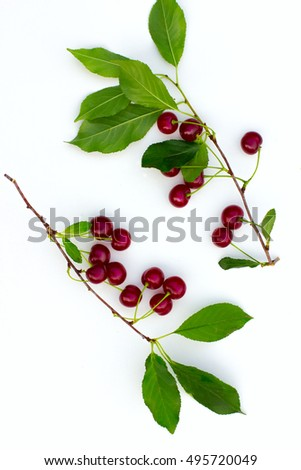 ripe cherry brunches on the white background