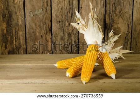 ripe corn - stock photo