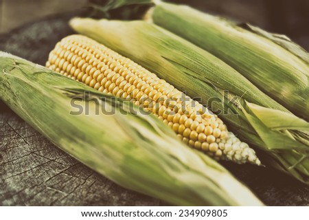 Ripe corn on a wooden table - stock photo