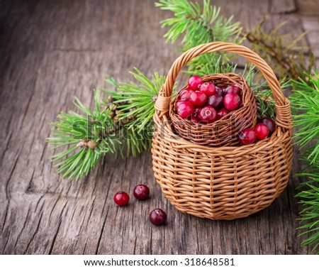 Ripe cranberries in wicker basket on dark wooden background with pine branches in the background. selective Focus - stock photo