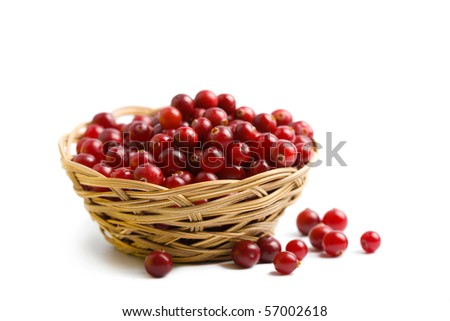 ripe cranberries isolated - stock photo