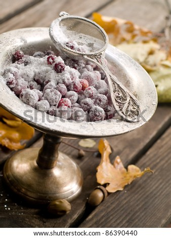 Ripe cranberry in sugar for dessert. Selective focus - stock photo