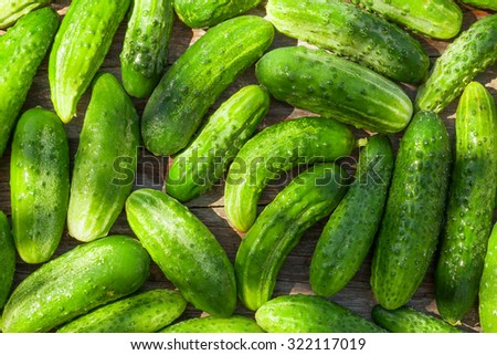 Ripe cucumbers texture on wooden garden table - stock photo