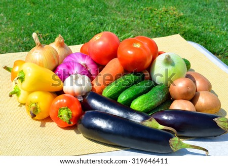 Ripe different vegetables on picnic on the nature - stock photo