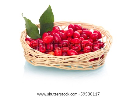 Ripe dogberries with leaves in basket isolated on white background