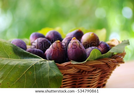 ripe fig fruits on basket
