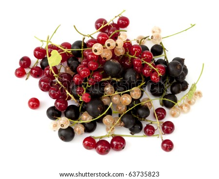 Ripe fresh currants on the white background. Different kinds of currants - stock photo