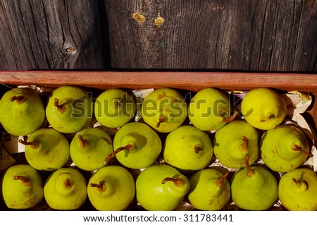 Ripe fresh green pears in a red wooden box. Autumn crop of pears