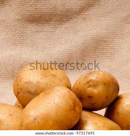 turgidity of potato tuber