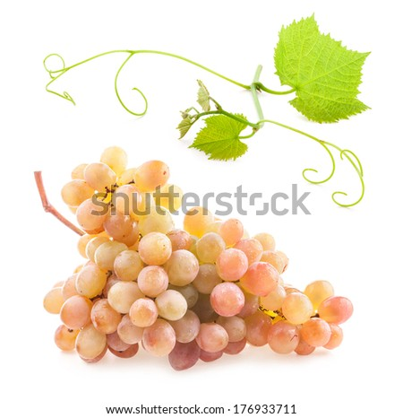 Ripe grape with water drops isolated on white background - stock photo