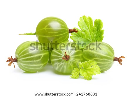 Ripe green gooseberry with leaf isolated on white - stock photo