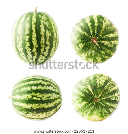 Ripe green watermelon fruit isolated over the white background, set of four foreshortenings - stock photo
