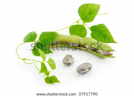Ripe Haricot Beans with Seed and Leaves Isolated on White Background - stock photo
