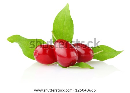 ripe juicy cornel with green leaf isolated on white background - stock photo