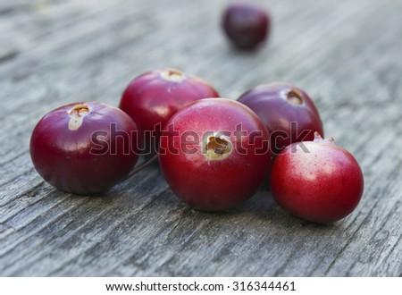 Ripe juicy cranberries on the wooden table. Bright autumn colorful background - stock photo