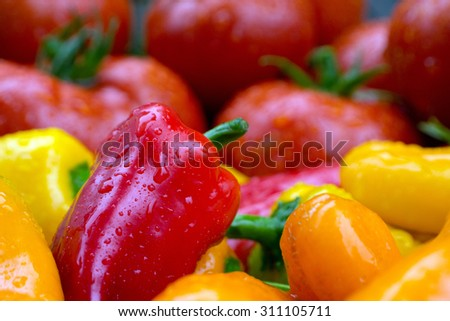 Ripe juicy farm fresh red, orange and yellow peppers and tomatoes. - stock photo