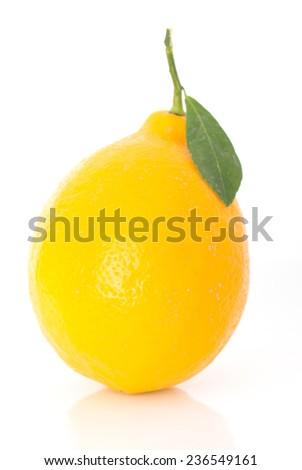 ripe lemons on a white background - stock photo