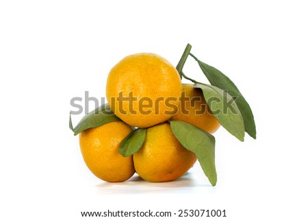 Ripe mandarin - stock photo