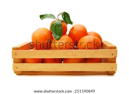 Ripe mandarin citrus isolated tangerine mandarine orange in wooden crate on white background.  - stock photo