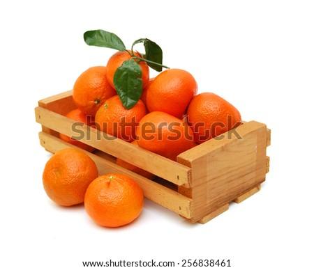 Ripe mandarin citrus isolated tangerine mandarine orange in wooden crate on white background.  - stock photo