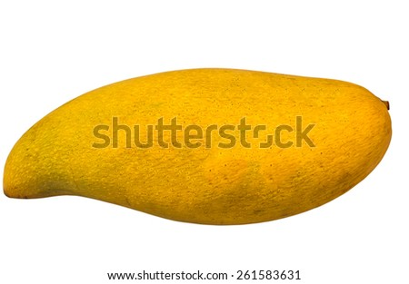 ripe mangoes isolated in white background with clipping path - stock photo