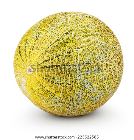 Ripe melon isolated on white background with clipping path - stock photo