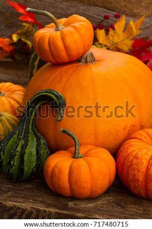 ripe of raw orange and green pumpkins on wooden table