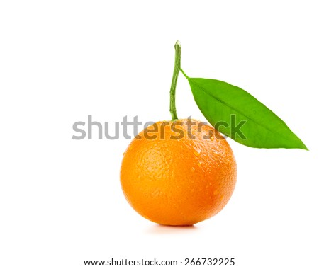Ripe orange fruit with drops of water on the skin  - stock photo