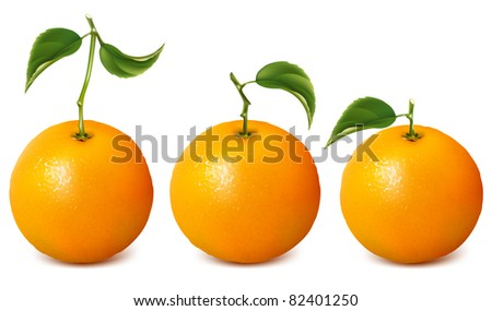 Ripe oranges with leaves. Raster version. - stock photo