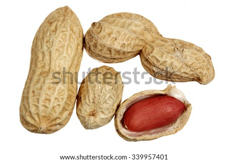 Ripe peanut it is isolated on a white background - stock photo