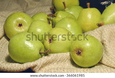 Ripe pears fragrant scattered on a light background fabric. - stock photo